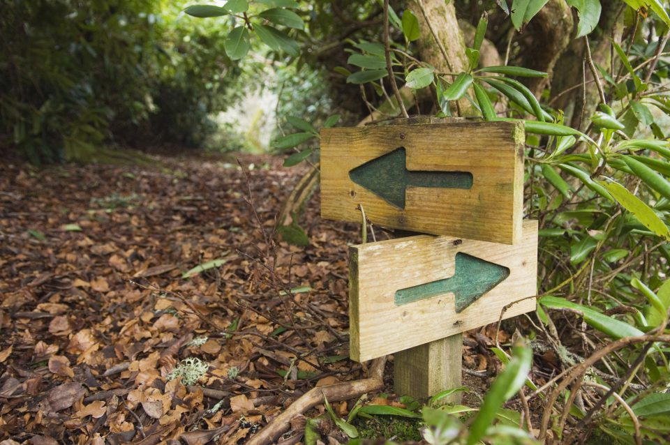 A walking path goes in two directions with a sign showing two arrows, one pointing left and one pointing right.