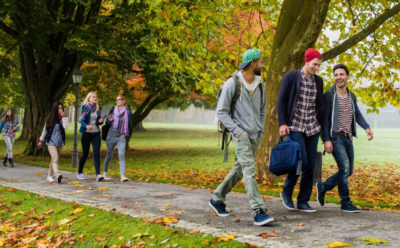 Students happily walk together along a path in fall, there are freshly fallen leaves on the ground.